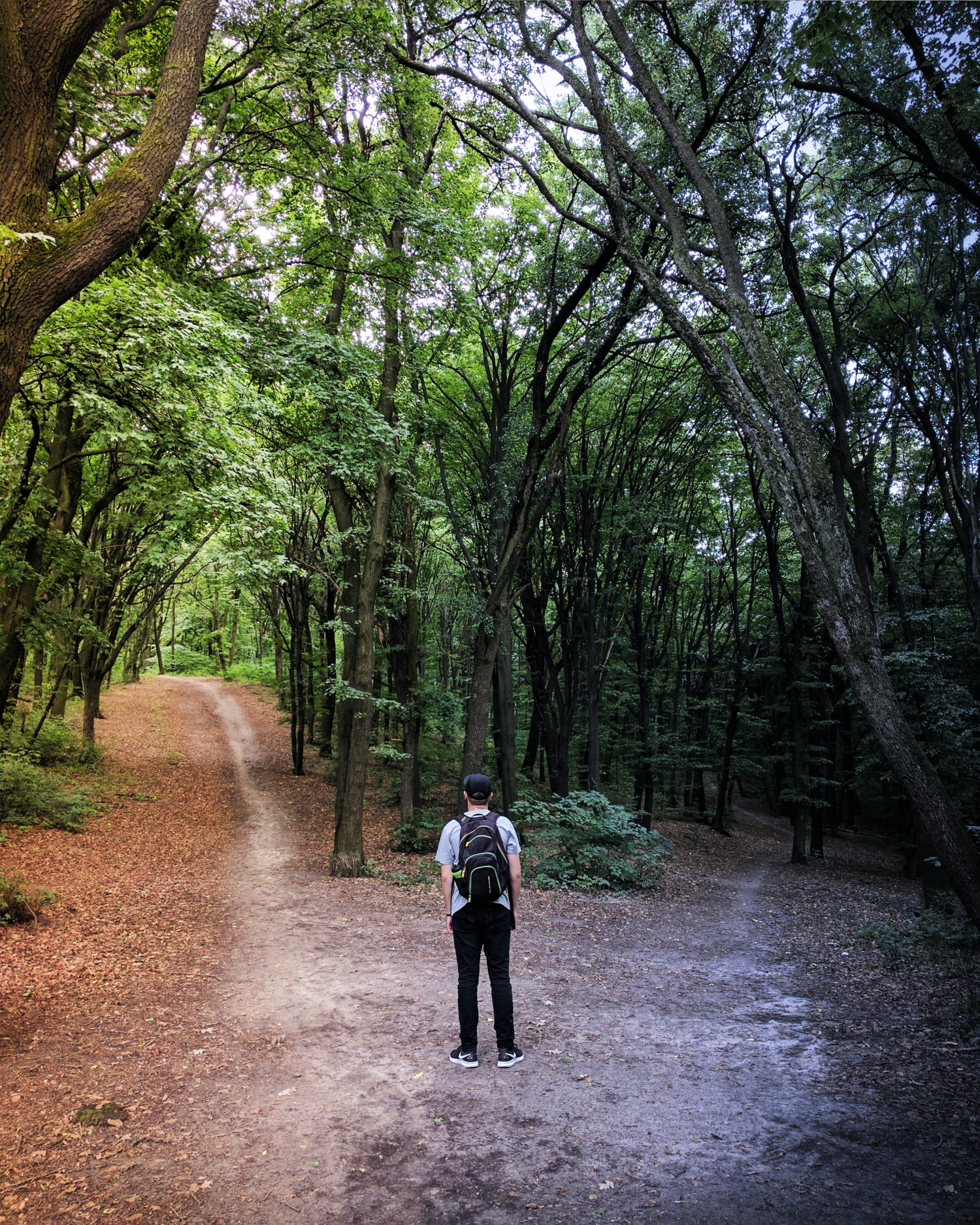 Man standing in a wood at a fork where paths diverge